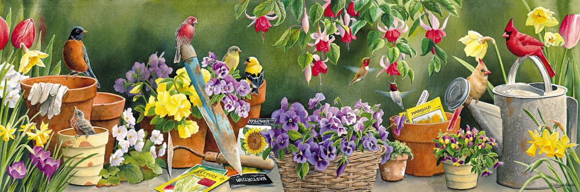 Images Endroits Fleuris