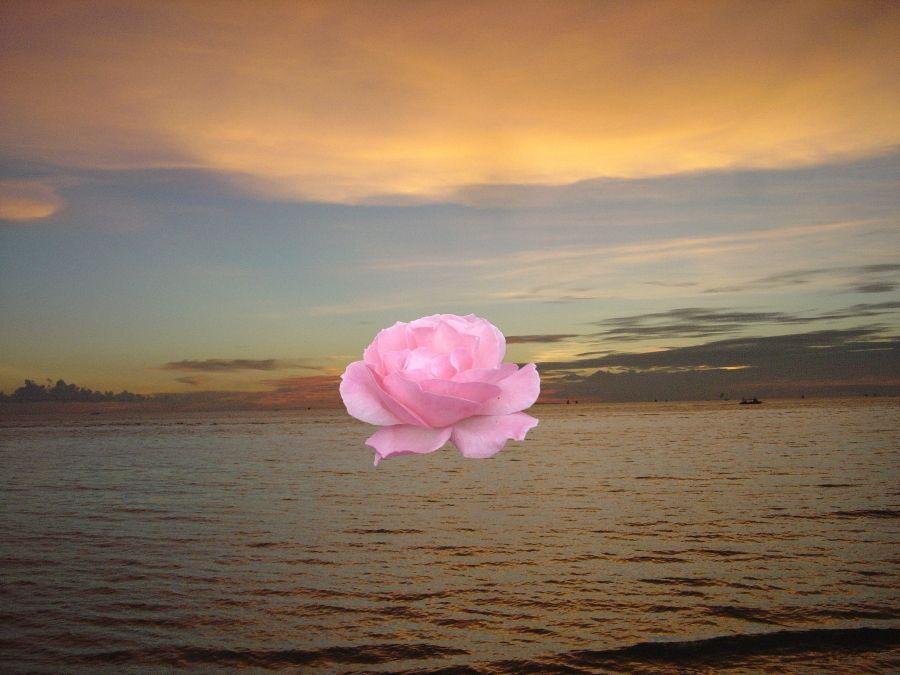 Bonsoir à toutes et tous